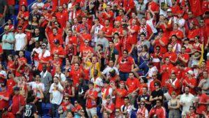 Red Bulls Fans